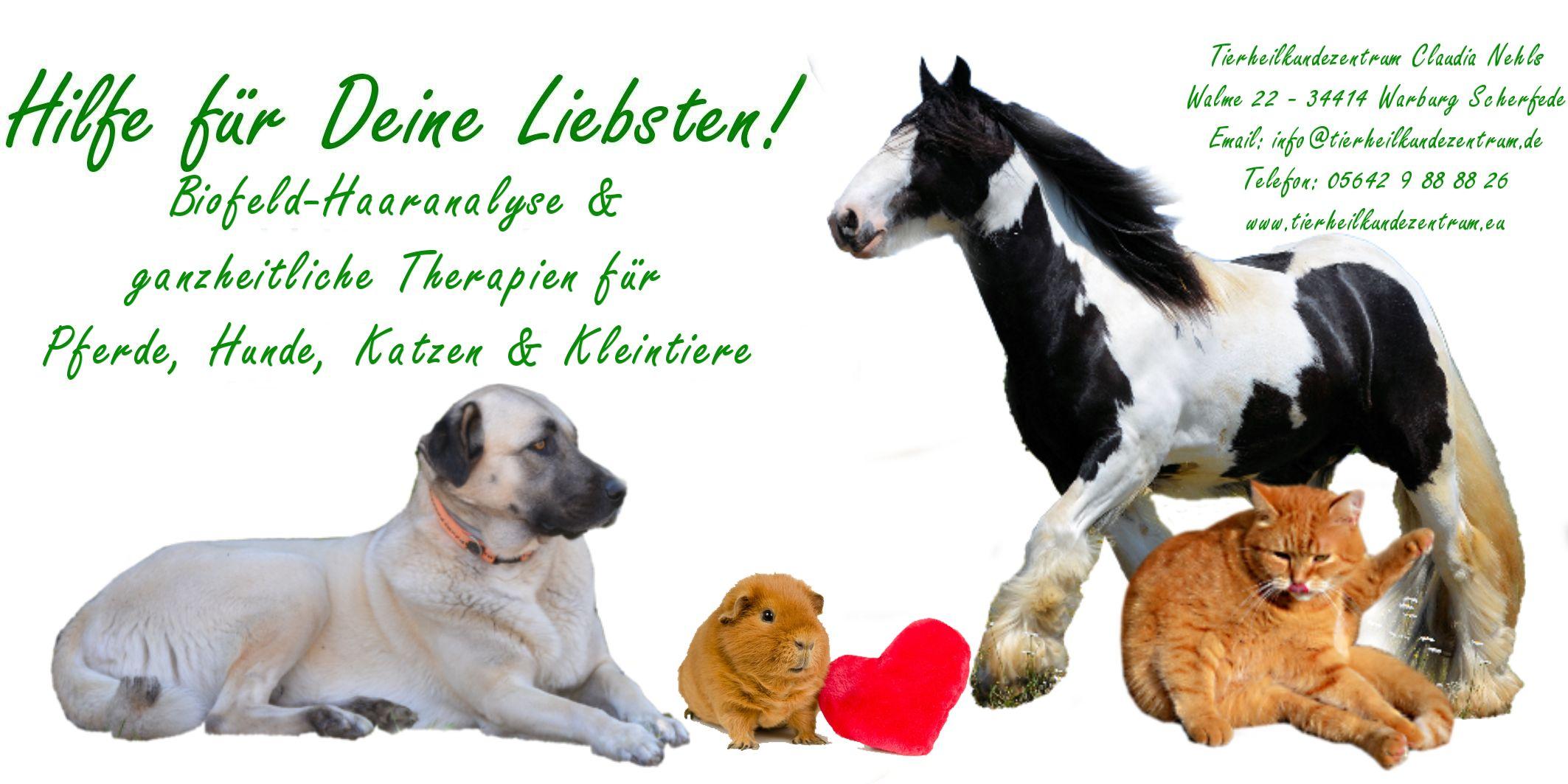 Tierheilkundezentrum Shop - Homöopathisches Tierarzneimittel für ...